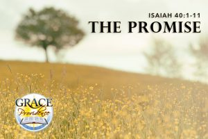isaiah-40-the-promise